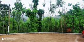 *5 acre coffee estate and beautifull house for sale in Chikkamagaluru*