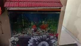 Aquarium good condition