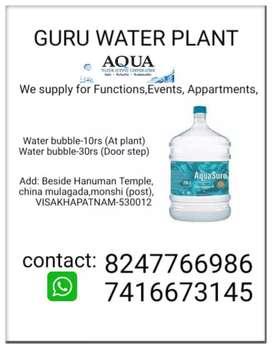 Guru water plant