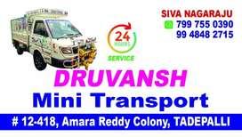 Mini transport services