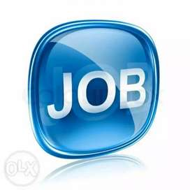 Female and male job vecancy