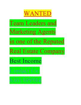 Marketing persons in app application and real estate