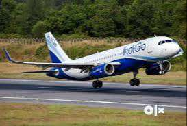 Offering Fulltime Job in IndiGo Airlines company for fresh/experience 0