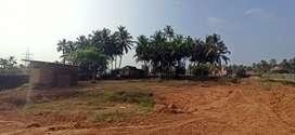 Empty plot for rent