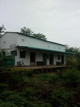 new whitner rice mill