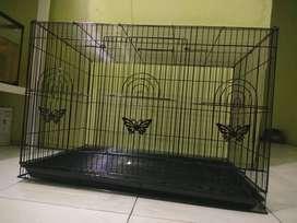 Kandang Kucing Ukuran 60x40x40cm (BARU)