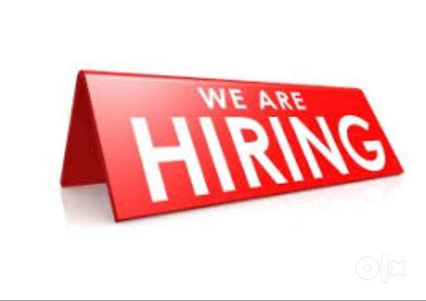 1000 JOB DELIVERY BOYS REQUIRED IN BENGALORE 0
