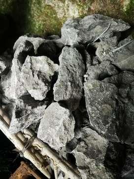Batu erangga aquarium /aquascape