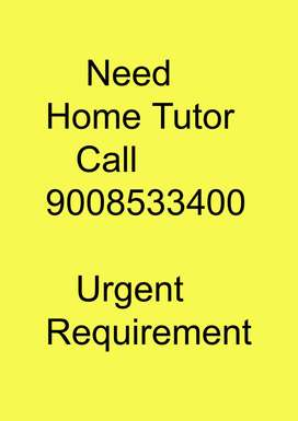 Need Home Tutor