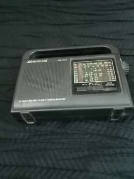 Antique Radio vintage classic 10 band