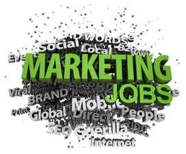 social media manager /Business Developer