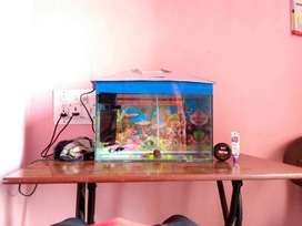 aquarium whit cover 1200 without cover 1050