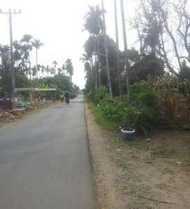 Jual Tanah Datar di Ujung Serang Tj. Morawa dekat Bandara Kualanamu