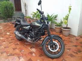 Very well maintained Bajaj Avenger 220 street - olive green