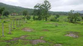 20 gunta vajreshwari ambadi mein road touch 1) title clear 2) Ambadi m