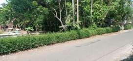 Tanah pekarangan mangku jalan Aspal, strategis samping pasar seren