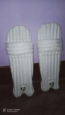 Below 14 year boys cricket pads SG