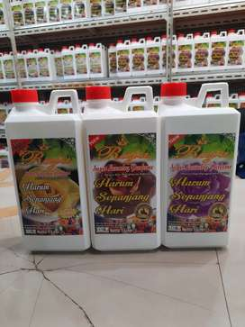 Parfum Laundry Raja OB