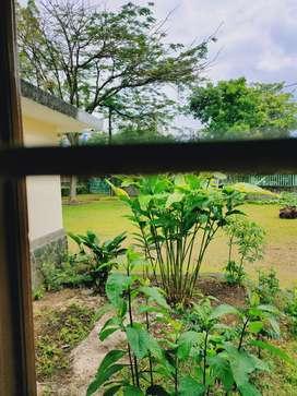 Dicari Asisten Rumah Tangga untuk kerja tinggal di rumah