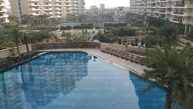 2 BHK Unfurnished flat on rent in Ace city Noida Extension