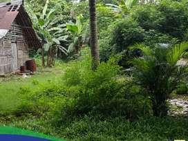 Di Jual Tanah Di Gunung Sindur - Bogor