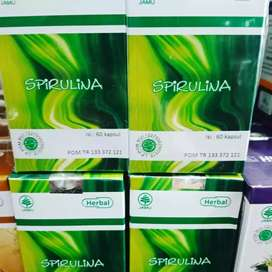 Ready herbal Spirulina isi 60 kapsul