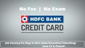 Job Vacancy for Girls & Boys - HDFC Bank Credit Card Executive