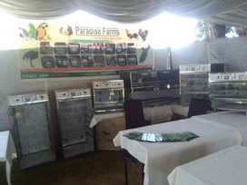 Paradise Incubator fully automatic equipments
