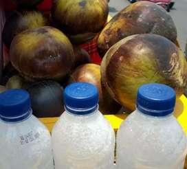 Legen siwalan minuman alami banyak manfaat tanpa bahan kimia