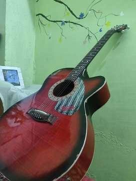 Italiano Hollow Guitar