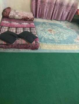 Girl/lady roomate required to share a room with CA Girl