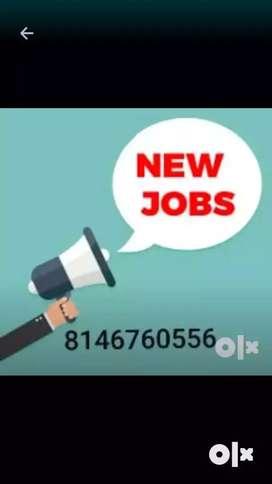 Online promotion work at home based job