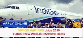 Opening for airhostess and ground staff Job