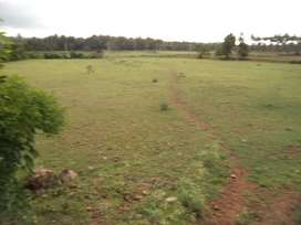 20 x 30 Plot for sale in Vijaya Nagar 2nd stage, Mysore.