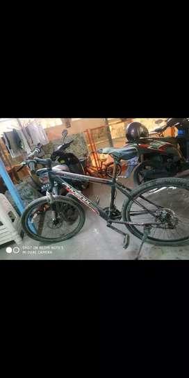 Sepeda Phoenix team technology