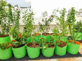 Grow Bags for Kitchen gardening and terrace gardening