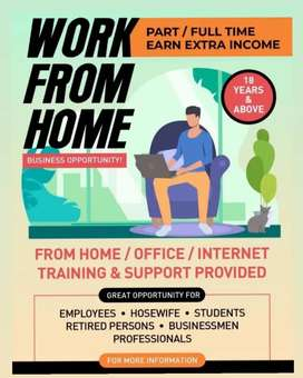 Work From Home (Digital Business Consultant)