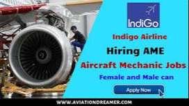 Indigo/Spice Jet Needs Ground Staff In  Airport For HS & Above