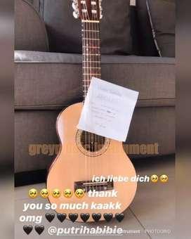 Gitar lele greymusic seri 3270