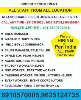 Urgent Need All Field Staff in Dehradun Need Coordinator in dehradun