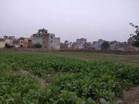 Residential Land For Sale in Mohan Garden 1.5KM from Dwarka Metro