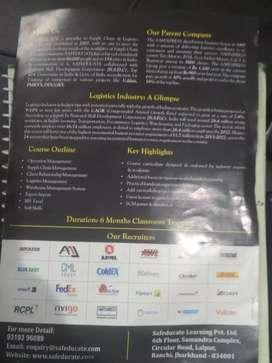 Operational executive in logistics