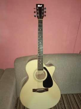 Gitar cort bekas