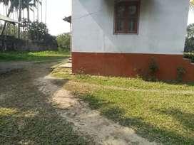 Jitu Bora. Jail road. Mohi Bora path.Nagaon.