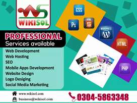 Web Design Development and SEO Services Complate Plan