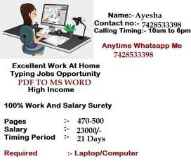 Guaranteed !! Earn Awesome Income With Data Typing Work