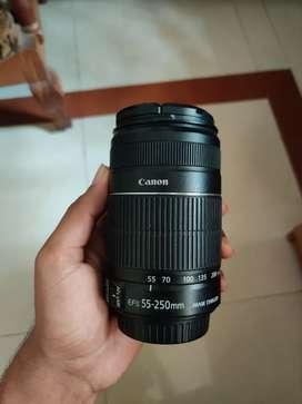 Canon 55-250 mm lens