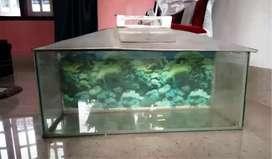 Best Condition Aquarium Big Size Clear Glass