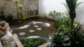 Tukang dekorasi taman baru-jual tanaman hias taman