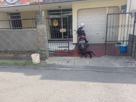 Dikontrakkan Rumah 2 lantai  Pucang Sewu 1 no 3 Surabaya